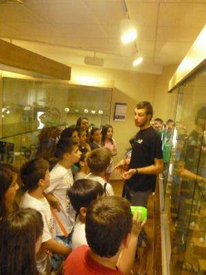 Museo de la Naturaleza